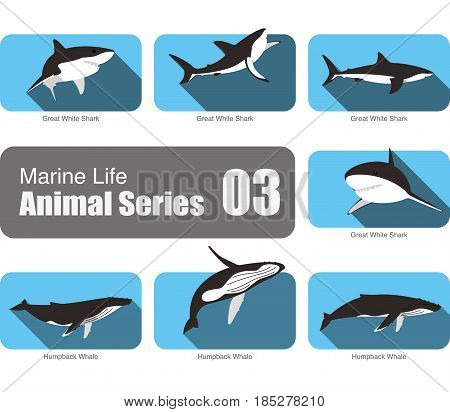 Flat Marine Life Cartoon Collection, Vector Illustration.