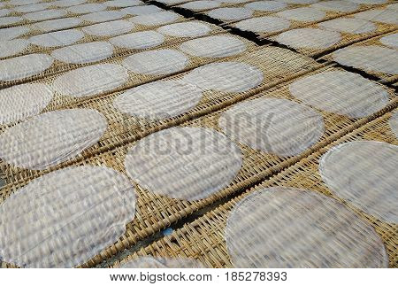 Rice pancakes drying on the sun in the rice noodles factory, Can Tho (Mekong Delta), South Vietnam