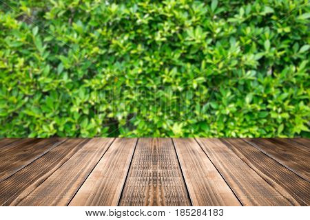 Old wood coordination table top on nature background,Space available for the product