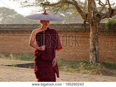 Buddhist Monk At Temple In Bagan, Myanmar