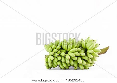bundle of raw egg bananas  on white background healthy Pisang Mas Banana fruit food isolated