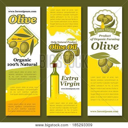 Olive oil banners of green and black olives. Vector design for extra virgin natural organic oil product in bottle of Italian cuisine with olive tree branches and fresh harvest fruits