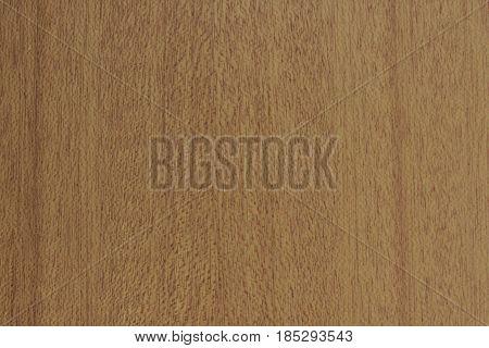 Australian residential interior vertical wooden door for texture or bump map
