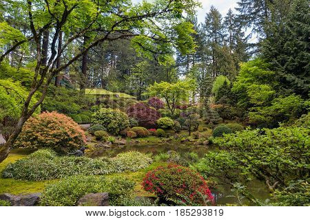 Upper Pond at Portland Japanese Garden in Spring Season