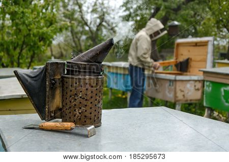Old bee smoker. Beekeeping tool. The beekeeper works on an apiary near the hives