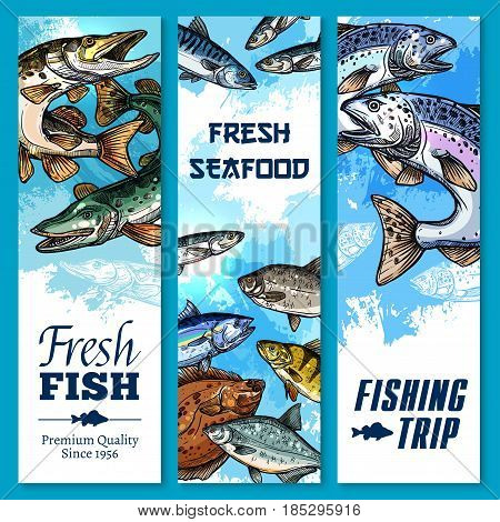 Fishing trip vector banners sketch set. Fisherman big catch of fresh sea food and fish salmon, herring or trout and bream, tuna or pike and sheatfish, flounder, marlin and crucian carp or perch