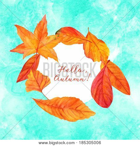 Hello, Autumn design with vibrant fall leaves, yellow and orange, on a hand painted teal watercolor texture. An artistic template for a card, flier, or invitation