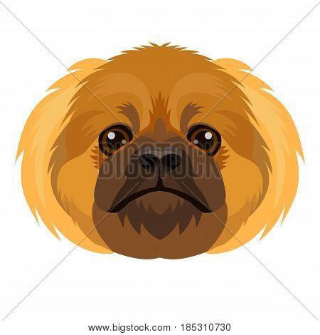 Vector cute Pekingese breed dog face dog icon symbol of 2018 new year