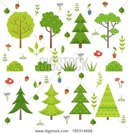 Different forest plants, trees mushrooms and other floral elements. Cartoon vector illustration isolate on white. Green tree forest, nature tree and mushroom design
