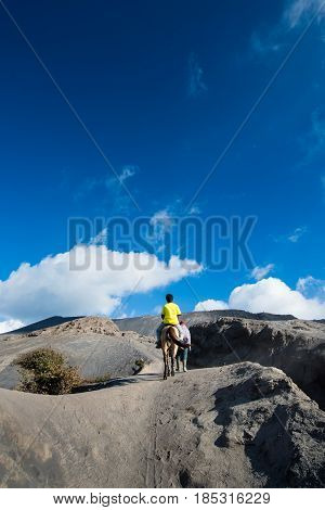 Tourists Ride The Horse At Mount Bromo, East Java, Indonesia