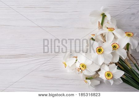 White wooden background with daffodils flowers. spase for text.