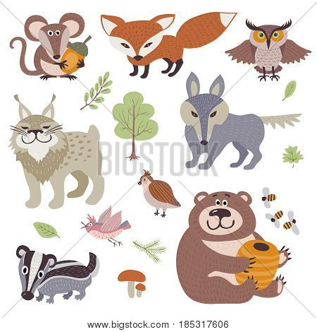Happy cartoon and funny wood animals in forest vector collection. Forest animal lynx and bird, illustration of zoo animal bear and owl