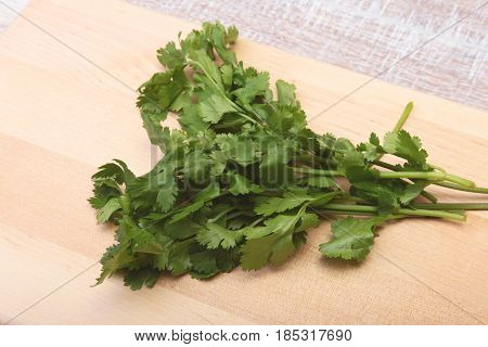 Fresh green cilantro, coriander leaves on wooden table.