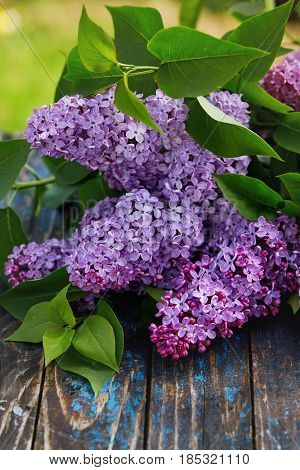 Branches of flowering lilac on weathered wooden table