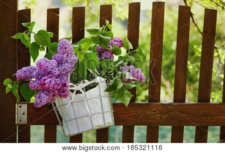 Lilac flowers in basket hanging on wooden garden fence. Bouquet of lilac decorating weathered wooden fence.