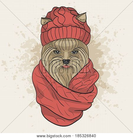Vector color sketch of elegant dog womans face with knitting cap and snood. Fashion look.