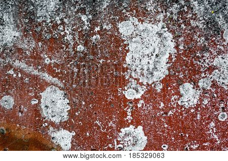 abstract background and texture rust brown red colored with large white and gray spots.