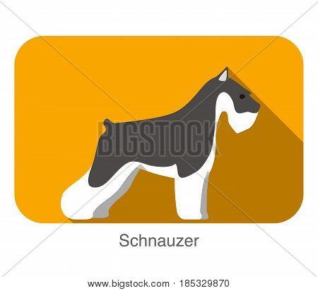 Schnauzer Dog Breed Flat Icon Design