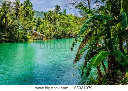 Jungle green river Loboc at Bohol island of Philippines. Bamboo hut under palm trees, Bohol, Philippines.