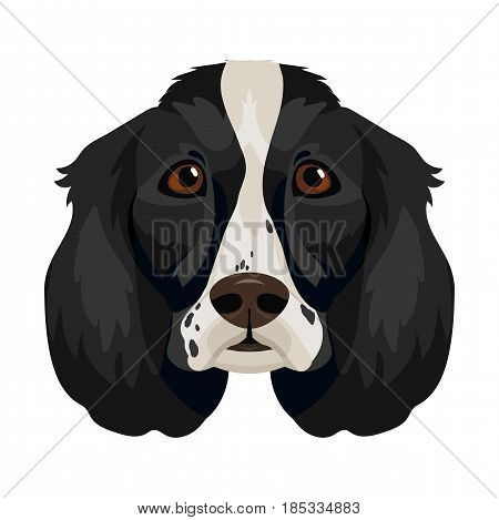 Vector english cocker spaniel face dog breed icon domestic animal
