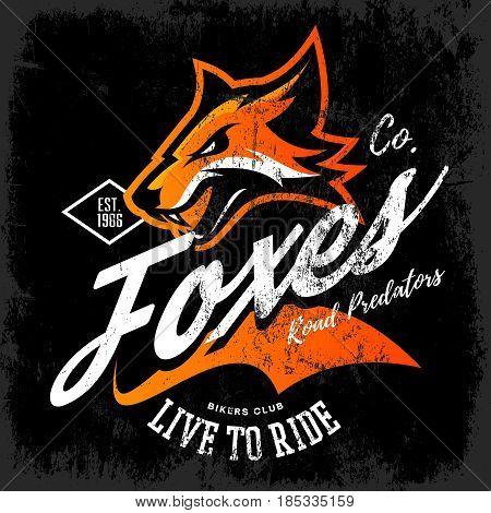 Vintage American furious fox bikers club tee print vector design isolated on black background. Street wear t-shirt emblem.  Premium quality wild animal superior mascot logo concept illustration.