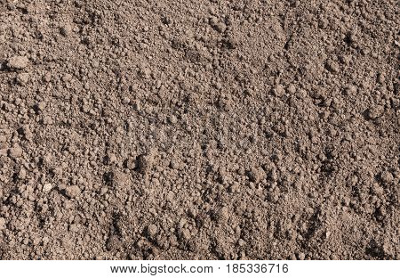 Brown soil texture with small and big lumps