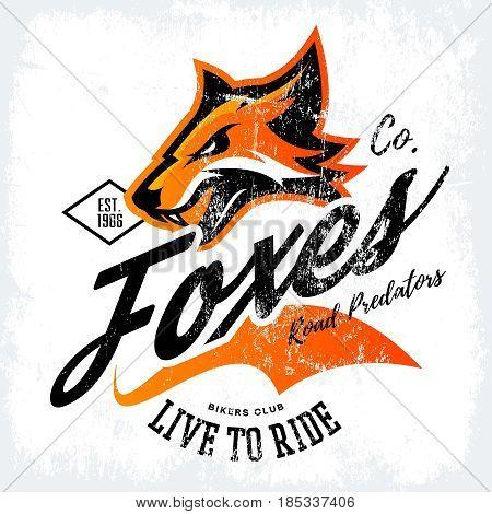 Vintage American furious fox bikers club tee print vector design isolated on white background. Street wear t-shirt emblem.  Premium quality wild animal superior mascot logo concept illustration.