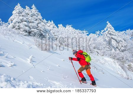 Woman in the winter journey with a backpack on mountains.