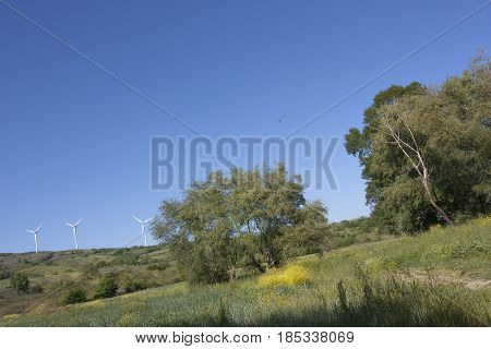 Open countryside and in the background some wind turbines to understand a concept of environment and safeguarding the territory