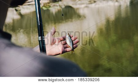 Close-up Captured Fish With A Hook In The Hands Of The European Angler . Sport Fishing In Nature.
