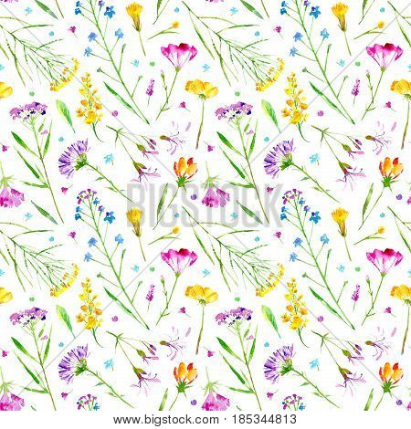 Floral seamless pattern of a wild flowers and herbs on a white background. Buttercup, cornflower, clover, bluebell, forget-me-not, vetch, grass, lobelia, snowdrop flowers. Watercolor hand drawn illustration.