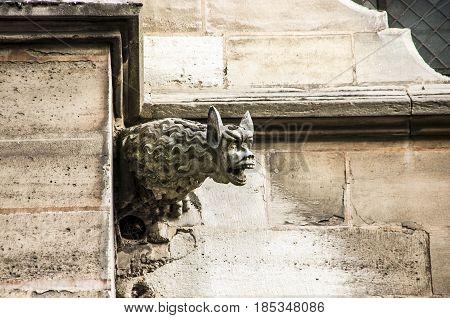 Notre Dame. Monster (Gargouille) on the church