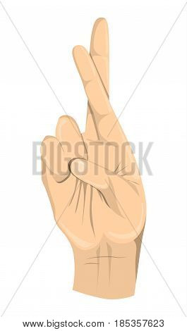 Isolated crossed fingers on white background. Symbol of fraud, luck.