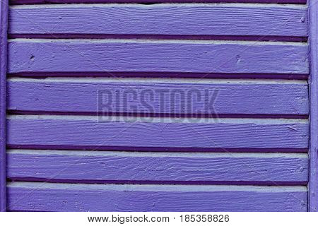 Wooden Violet Wall Close-up
