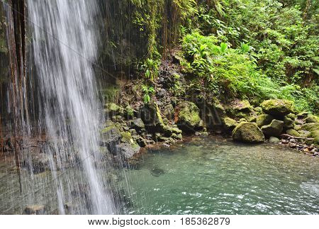 Emerald pool and waterfall in Dominica tropical rainforest