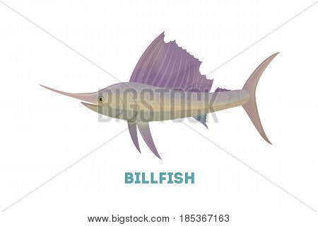 Isolated marlin fish on white background. Seafood.