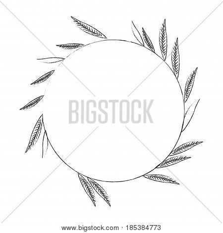 blurred silhouette image decorative crown of elongated leaves in circular shape vector illustration