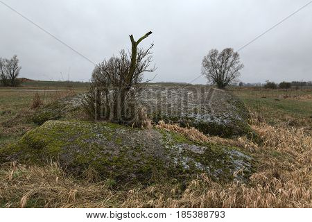 Erratic Block At Neu Dargelin, Mecklenburg-vorpommern, Germany