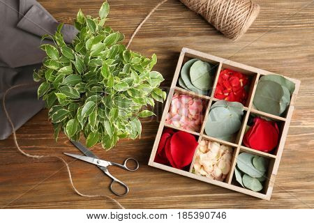 Beautiful ficus and slot box with petals and leaves on wooden background