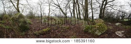 Panorama Of Remains Of Megalithic Tomb Neu Negentin In Mecklenburg-vorpommern, Germany