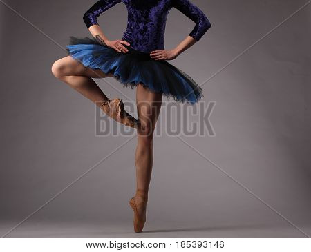 Unrecognizable Ballerina In Studio, Blue Tutu. Classical Ballet.