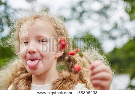 Girl stretches naughty tongue out while rosehip picking in autumn