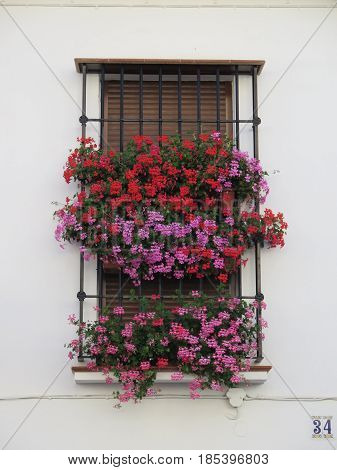 Flowers behind Wrought Iron Grill or bars on Window in andalusian village