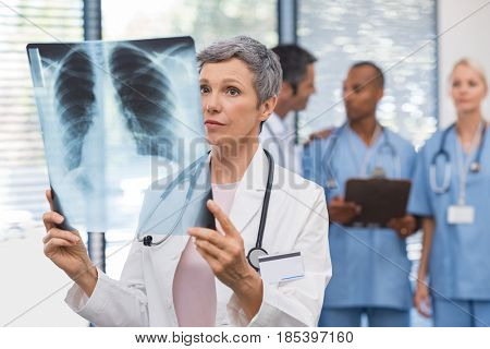 Senior woman doctor checking x ray report in clinic. Portrait of mature doctor reading xray with medical team in backgroud. Serious senior physician looking at x-ray with surgeons in background.