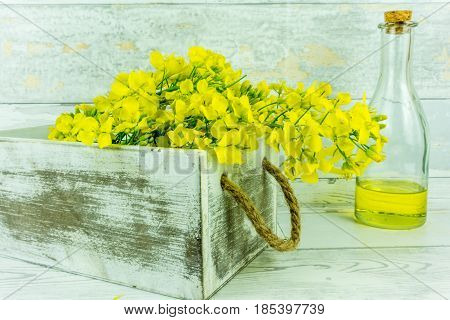 Rapeseed flowers with a bottle of rapeseed oil on a rustic wooden table