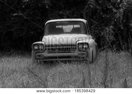 An old truck left in a field surrounded by trees and tall grasses.
