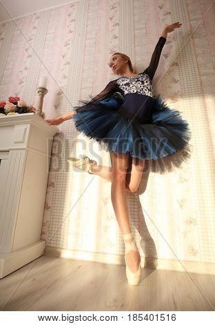 Portrait Of A Professional Ballerina In Sun Light In Home Interior. Ballet Concept.