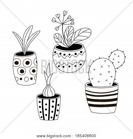 Set of four colorless potted plants in a hand-drawn style. Black and white vector illustration.