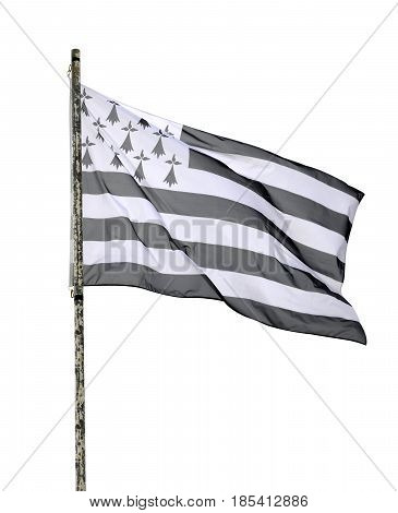 Flag of Brittany on the mast isolated on a white background.