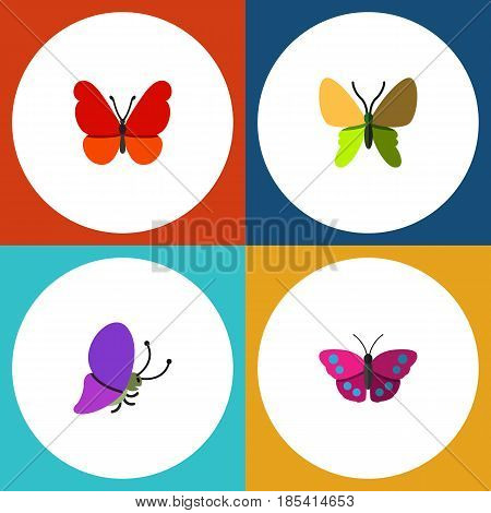 Flat Moth Set Of Summer Insect, Beauty Fly, Monarch And Other Vector Objects. Also Includes Archippus, Milkweed, Butterfly Elements.